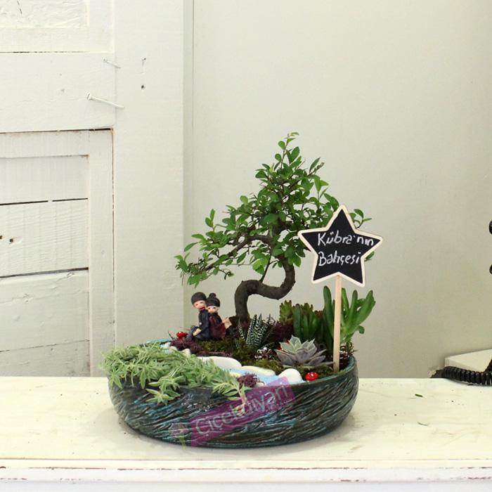 bahce bonsai
