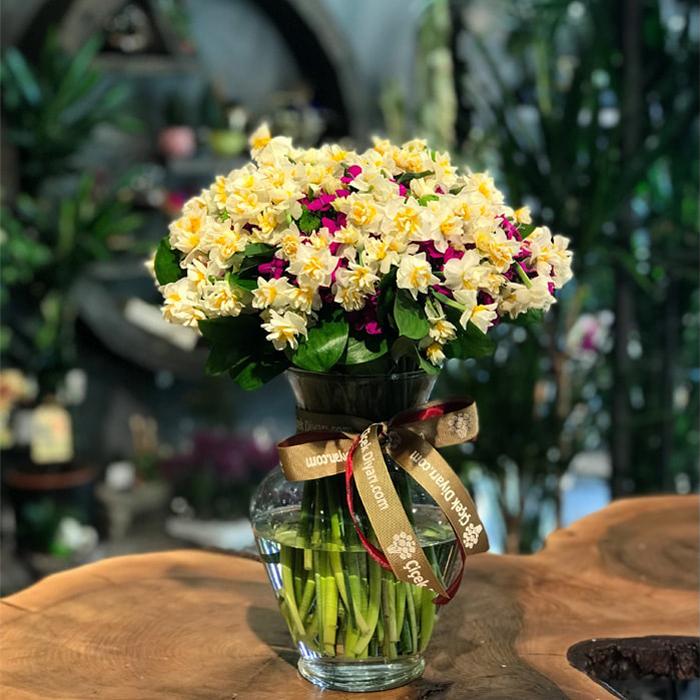 kis-saksi-bitkileri