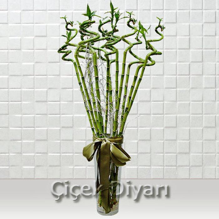 13 Luky Bambu