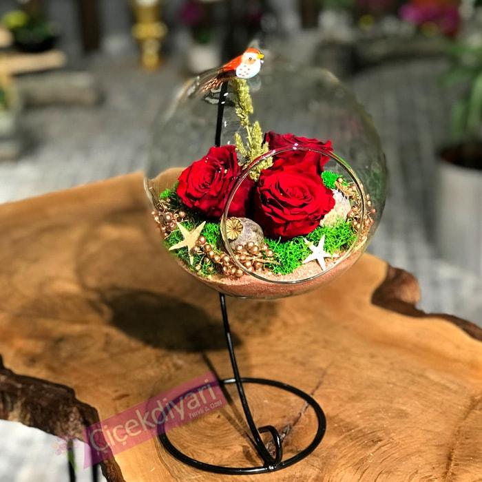 Gizemli Peri - Solmayan Güller
