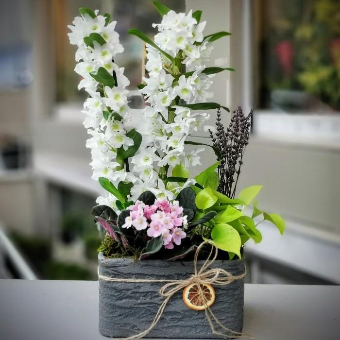 Haliç Serisi-Beyaz Bambu Orkide