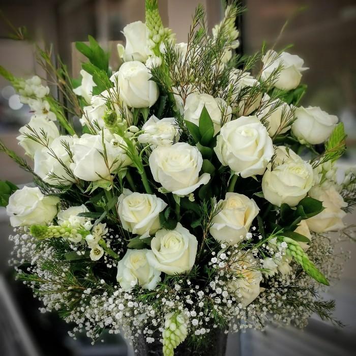 Beyaz Kuðu - Güller
