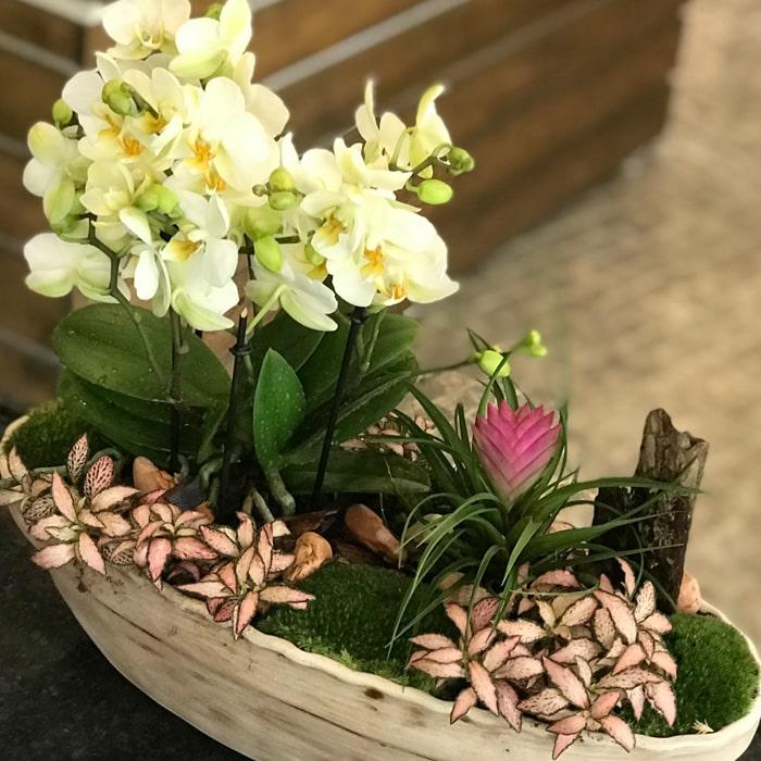 Maslak Orkide Tasarým