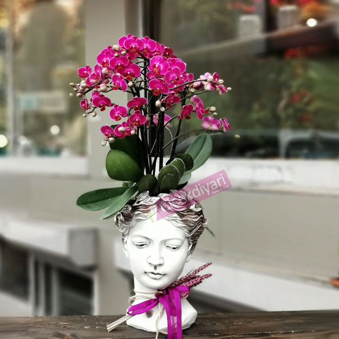 Güzellik - Helen