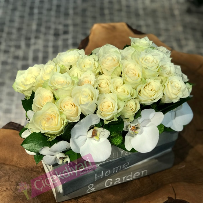 Kitapta Beyaz Güller