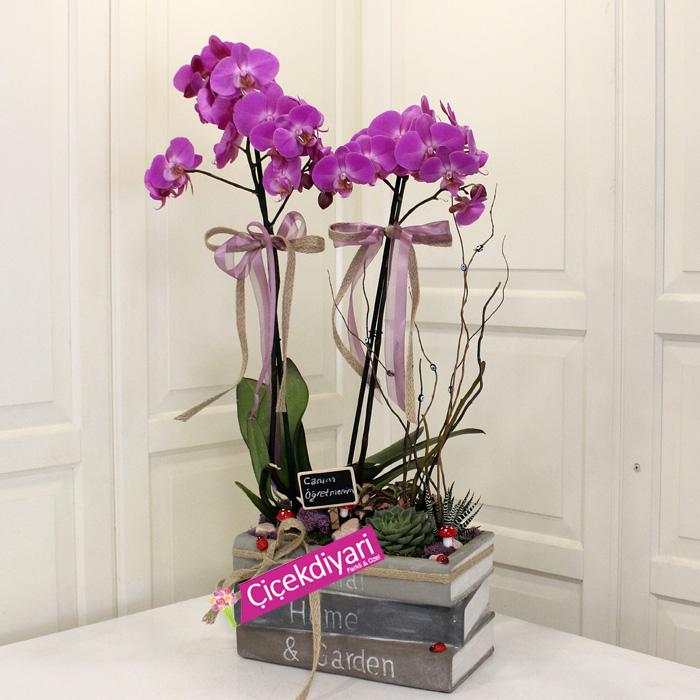 Öðretmenime(Kitapta Orkide)
