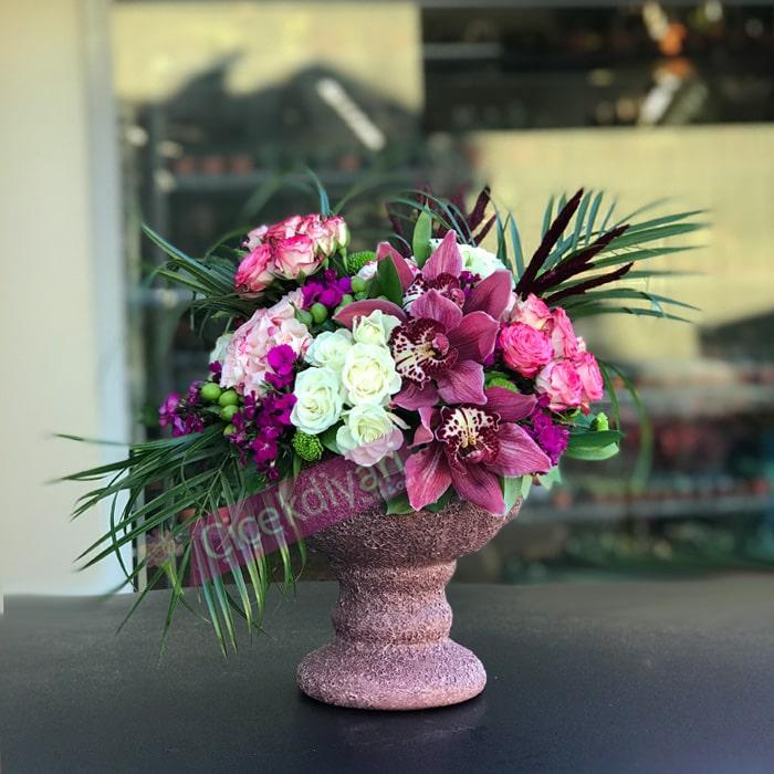 Mini Güller ve Orkide