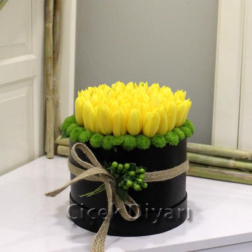 Kutu Dolusu Sarı Lale
