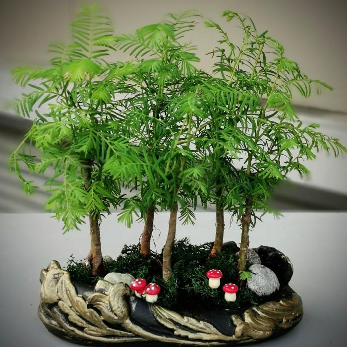 Larex Minyatür Orman Bonsai