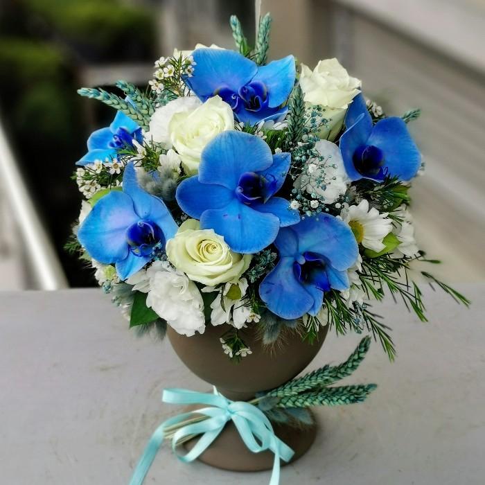 Mavi Orkide ve Güller