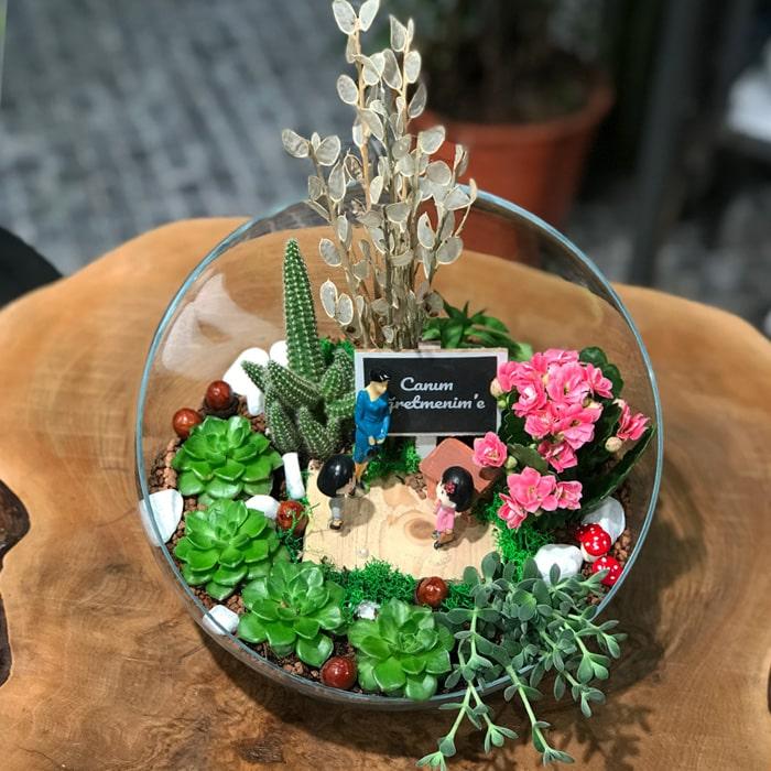 Caným Öðretmenim için Çiçek