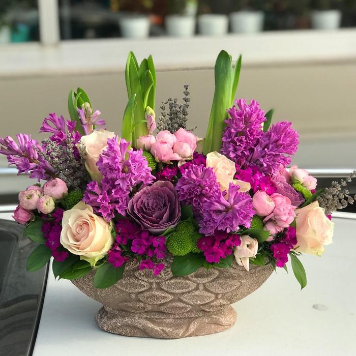 Pembe Sümbüller