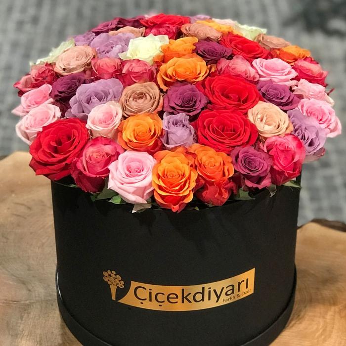 Kutu Dolusu Renkli Güller