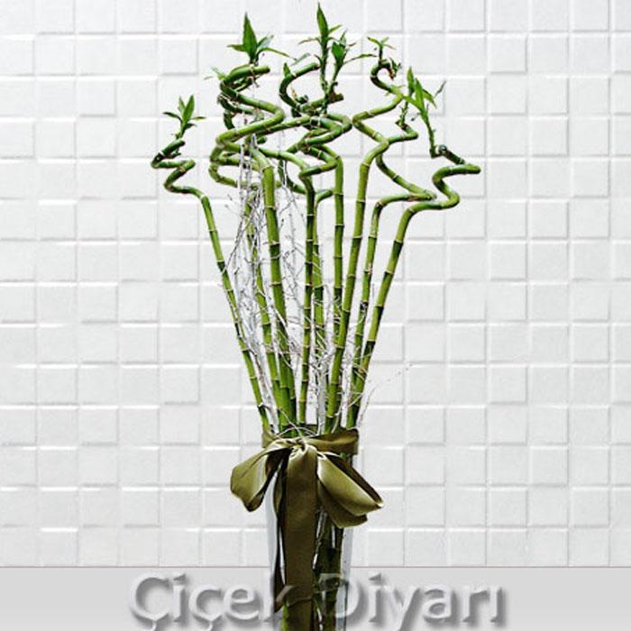 11 Luky Bambu