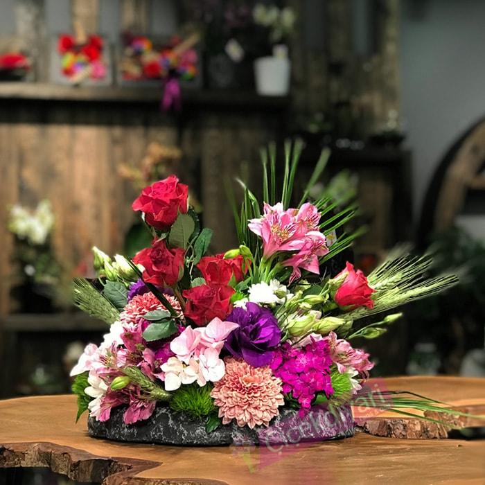 Taþta Açan Çiçekler