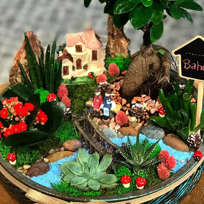Tolganýn Bahçesi