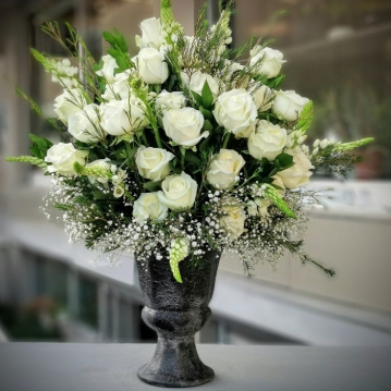 Beyaz Kuðu güller
