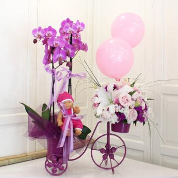 Pembe Bisiklette Bebek Çiçeği