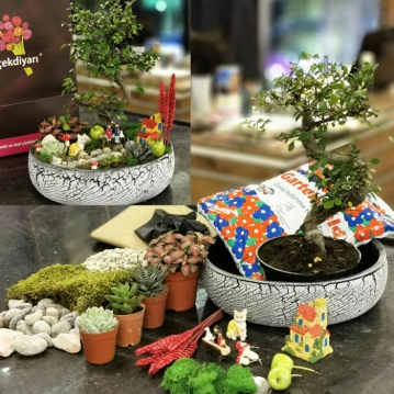 Bonsai Bahçe Kiti