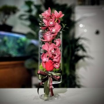 Cam Ýçinde Orkide