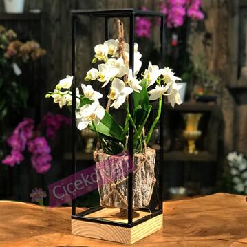 Ferforje Sehpada Orkide