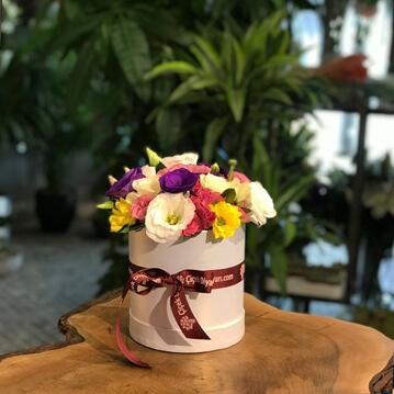 Kutuda Kýr Çiçekleri