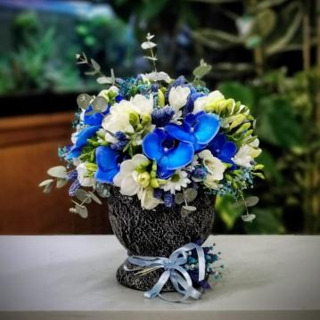 Mavi Orkide ve Frezyalar