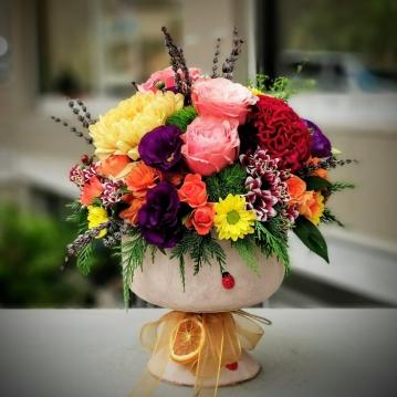 Sonbahar Çiçek