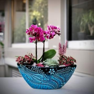 Minai Serisi - Orkide ve Sukkulent